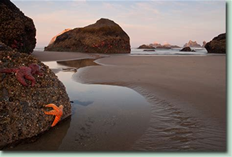 oregon coast photography workshop photo