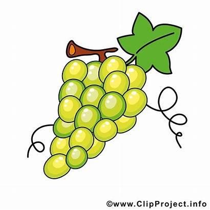 Weintrauben Clipart Weinglas Rahmen Fruechte Druer Kostenlos