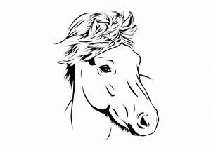 Pferdekopf Schwarz Weiß : wandtattoo pferdekopf ~ Watch28wear.com Haus und Dekorationen