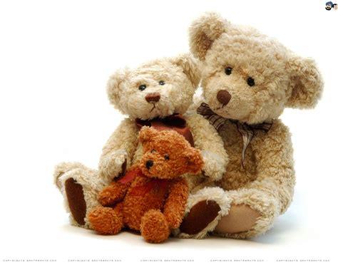 teddy bears teddy teddies teddy pictures teddy