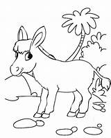 Donkey Coloring Printable Sheets Bee sketch template