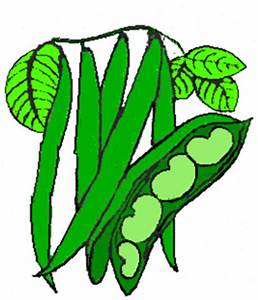 Green beans clipart - Clipground