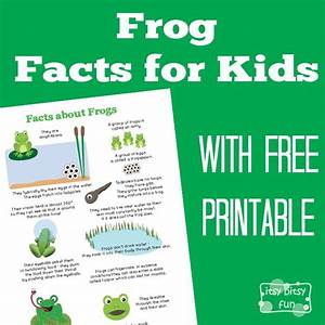 frog facts for kids | Room Kid