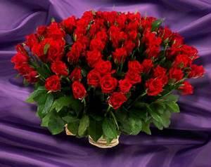 Beau Bouquet De Fleur : un beau bouquet de fleurs rouges ~ Dallasstarsshop.com Idées de Décoration