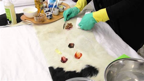 How To Clean Cowhide how to clean a cowhide rug 2019 cowhide cleaner demo by