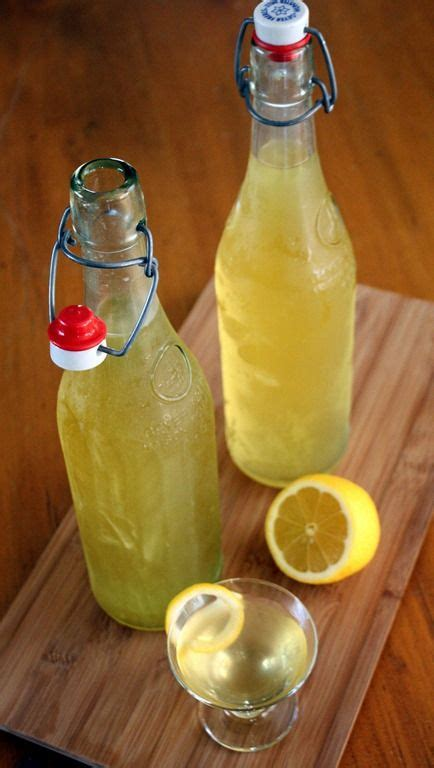 holiday drinks for adults best 25 100 proof vodka ideas on drinks drinks and