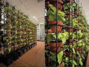 indoor vertical garden apartment indoor vertical garden