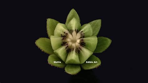 beautiful kiwi fruit lotus flower beginners lesson