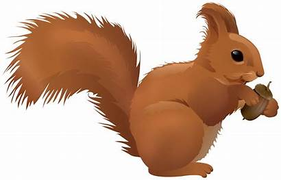 Squirrel Cartoon Clipart Transparent Clip Cartoons Radiation