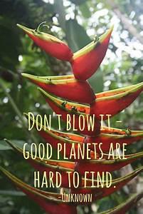 Good Planets ar... Amazon Jungle Quotes