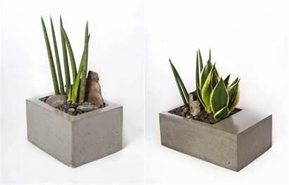 Concrete Planters Modern Built Last Homecrux Prices
