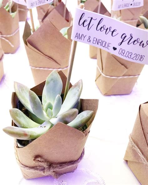 Let Love Grow Succulent Wedding Favors Dreamery Events