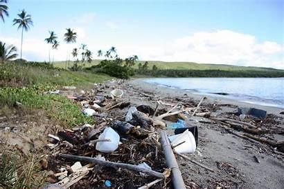 Debris Caribbean Beach Noaa Marine Cleaning Cleanup