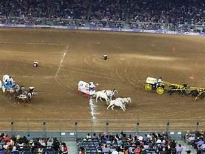 2019 Houston Rodeo Seating Chart Nrg Stadium Section 308 Row G Seat 21 Houston