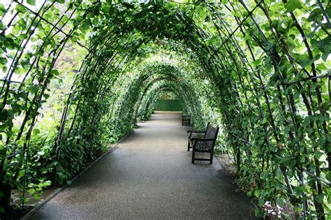Garden Arch Tunnel by 21 Innovative And Easy Diy Garden Trellis Ideas Gardenoid