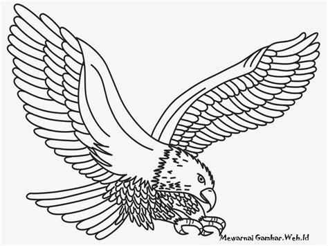 animasi elang terlengkap dan terupdate top animasi