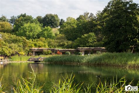 Britzer Garten by Dahlenfeuer Im Britzergarten Www Graphics De