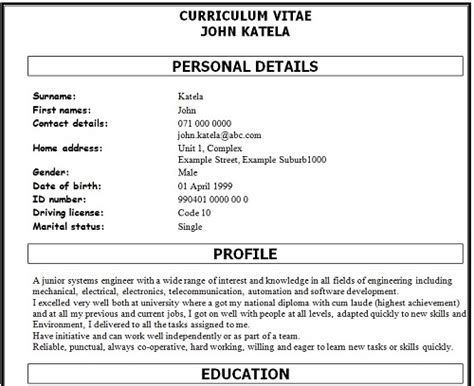 How To Do A Cv Template by How To Write A Great Professional Curriculum Vitae