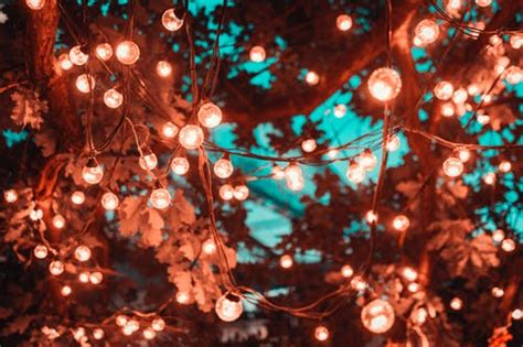 Wallpaper Lights by 1000 Beautiful Lights Photos 183 Pexels 183 Free Stock