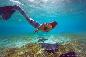 The World U2019s First Tropical Mermaid Retreat Will Take Place