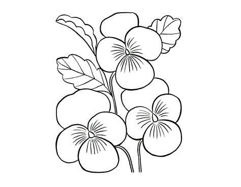 beautiful flower coloring pages beautiful flower