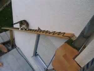 cat ladder we like cat ladders pet project