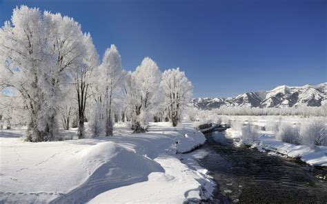 Winter Landscape Desktop Wallpapers 1280x800