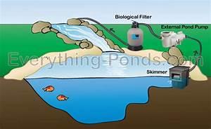 Choosing a Pond Skimmer - Everything-Ponds com