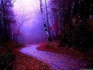 Misty Nature PowerPoint Background – Minimalist ...