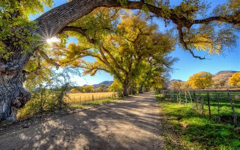 Autumn Landscape Country Road Trees Wallpaper Hd  Wallpapers13com. Tables For Living Room Cheap. Glass Shelves For Living Room. Interior Colors For Living Room. Living Room Furniture Cleveland. Country Living Room Curtains. Corner Unit Living Room. Modern Living Room Chandeliers. Living Room Sets Nj