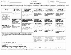 Nursing Patient Care Plan Example  U2026