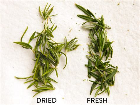 how to herbs use the microwave to dry your herbs for long lasting intense flavor serious eats