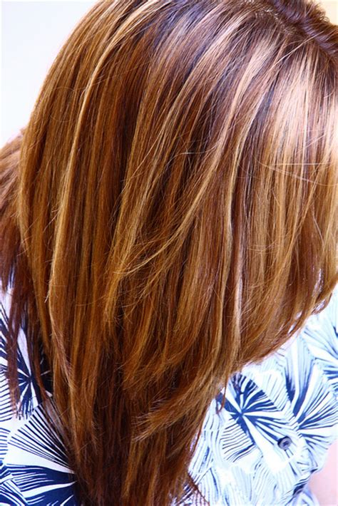 honey highlights on light brown hair warm brown with blonde and honey highlights honey