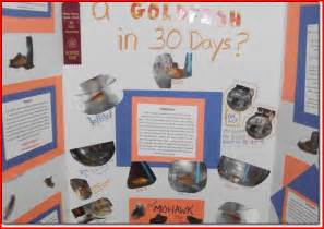 7th Grade Science Fair Project Ideas