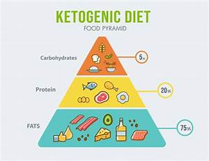 The 28 Day Keto Challenge Is A Digital Program  Upon