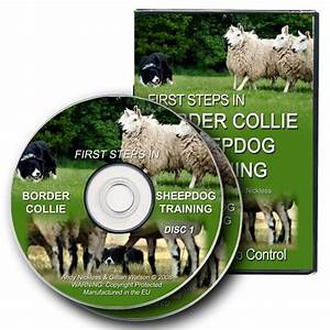 dvd first steps in border collie sheepdog training the With dog training dvd