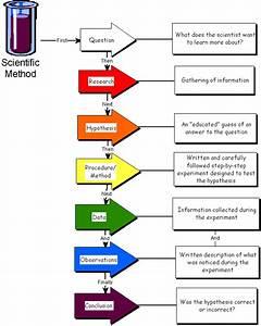 Biology 7th grade: Scientific method