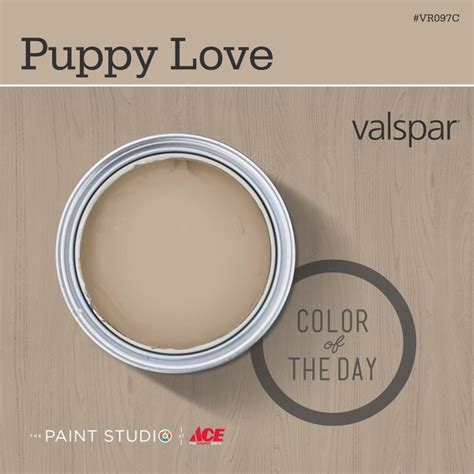 color of the day puppy by valspar 31daysofcolor paint inspiration thepaintstudio 31