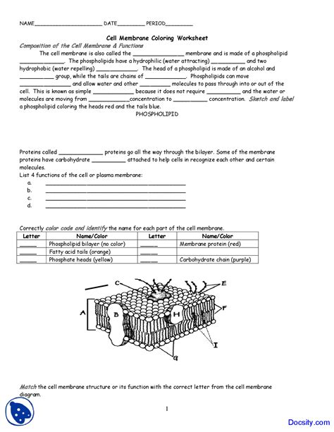 Worksheet Cell Membrane And Tonicity Worksheet Cell Membrane And Tonicity Worksheet Answers