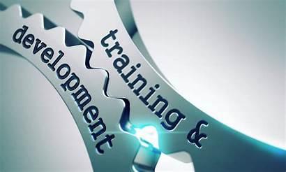 Training Development Learning Relevance Gears