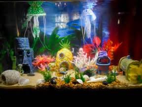 spongebob fish aquarium decorations idea for a bottom spongebob themed aquarium