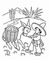Coloring Farm Animal Donkey Colorir Animals Esel Printable Sheets Stubborn Patterns Animais Ausmalbilder Terrestres Rocks Embroidery Desenhos Doodle Colouring Mexican sketch template