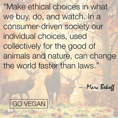vegan images  pinterest animal rescue vegan