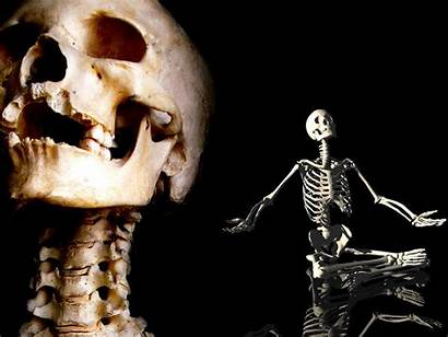 Skeleton Wallpapers Halloween Scary Horror Cool Funny