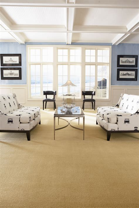 Fabrica Residential Carpet   Lewis Floor and Home