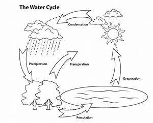 Draw A Diagram Of The Water Cycle
