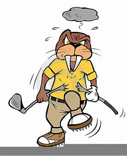 Golf Club Breaking Broken Clipart Cartoon Walrus