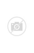 Red-Haired Shanks Boun...One Piece Shanks Crew Bounty