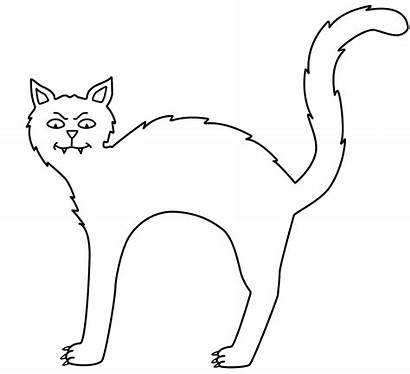 Coloring Halloween Cat Printable Gatos Chat Colorear