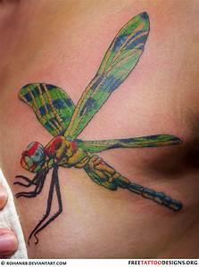 50 Dragonfly Tattoos